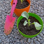 grindpad tuin aanleggen